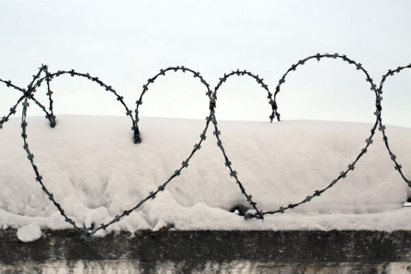 barbwire_hearts